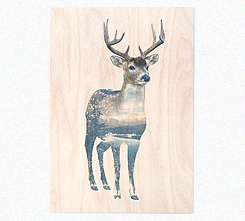Faunascapes Plywood Print Deer
