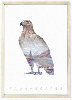 Faunascapes Poster Print Brown Eagle
