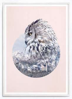 Faunascapes Geometric Art Print Owl